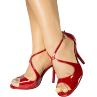 Ref 1203 Vibranto Shoes in red leather