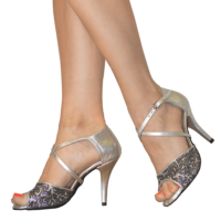 Silver shoes in Ref T264 C251R Vibranto shoes